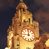 Royal Liver Building  - Liver building